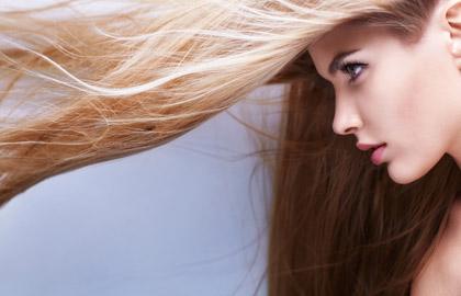 Hair Salon Highlights and Haircuts